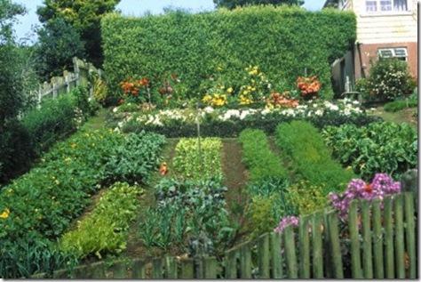 Sembrar verduras y hortalizas en nuestro jard n o terraza for Vivero el botanico