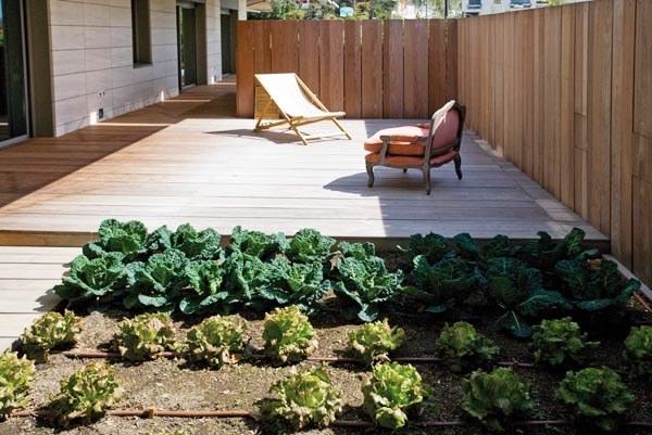 Abonos ecol gicos y fertilizantes ecologicos agrobeta blog - Pequeno huerto en casa ...