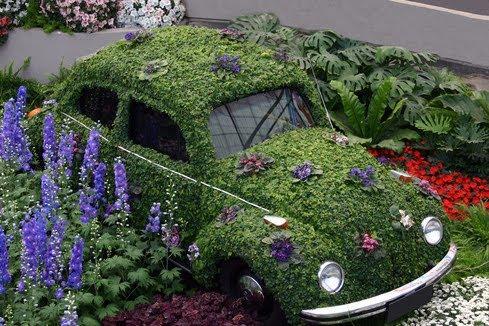 nuestro huerto urbano debe de ser en la medida de lo posible ecolgico para ello nuestro huerto en casa debe convertirse en una experiencia de
