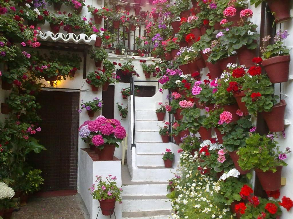 Abonos ecol gicos y fertilizantes ecologicos agrobeta blog for Abono para las plantas de jardin