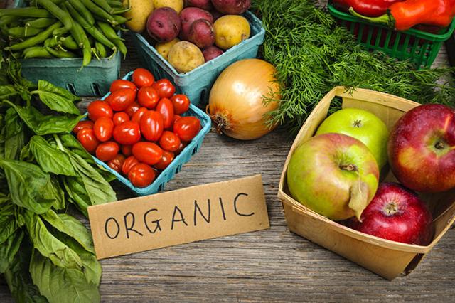 Organic_food_report2
