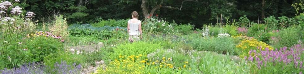 cropped-cara-in-garden1 (2)