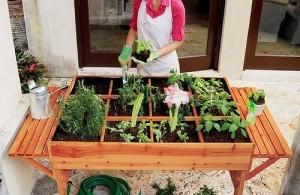 vegetable-garden-500x325