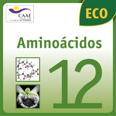 AMINOACIDOS 12 ECO