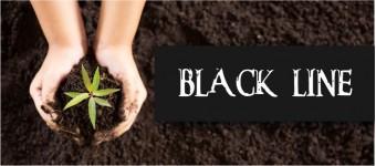 ABONOS BLACK LINE (CULTIVO ORGANICO)