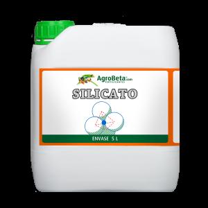 silicato 5l